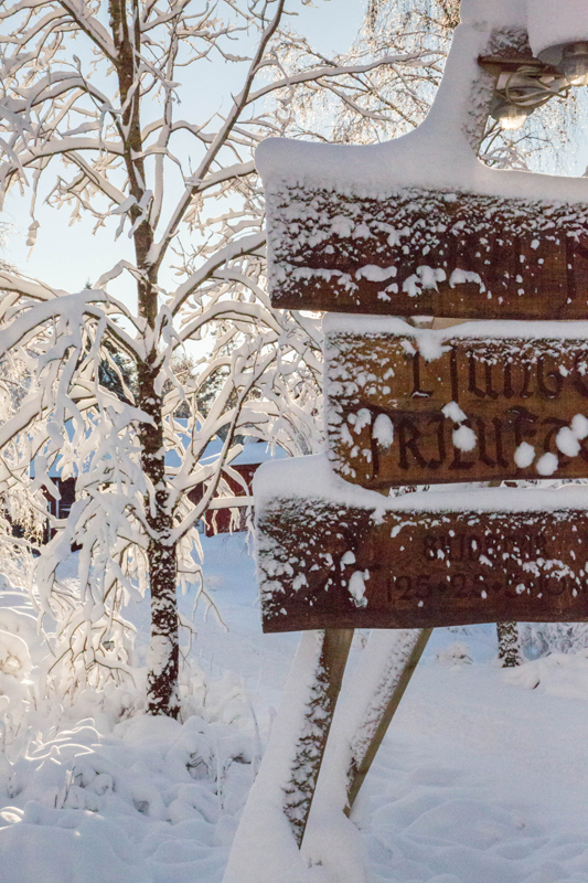 Vinterace, 2013-01-14