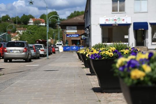 Ljungskile Friluftsklubb – Skogs- och bingopromenader Våren 2016.