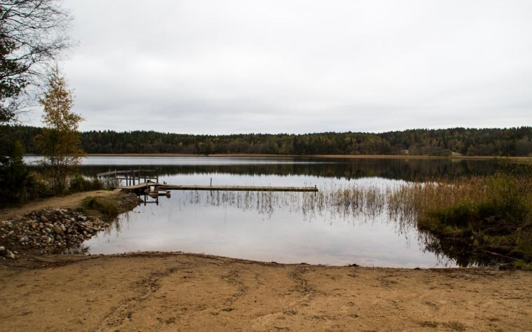 Skogspromenad 11 oktober på Backamoförläggningen.